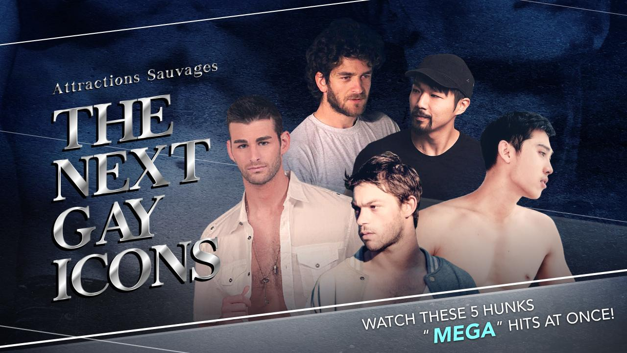 attractions-sauvages-the-next-gay-icons