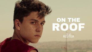 On the RoofTrailer