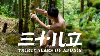 Thirty Years of Adonis