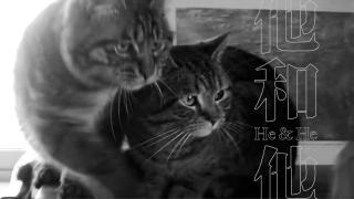 He & He