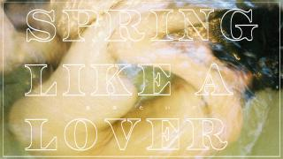 【Nov.9】Spring Like Lover