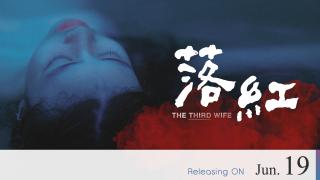 【Coming Soon】The Third Wife