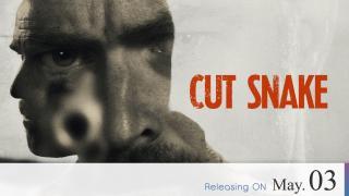 【Coming Soon】Cut Snake