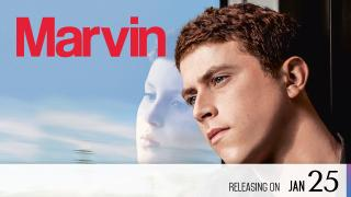 【Coming Soon】Reinventing Marvin